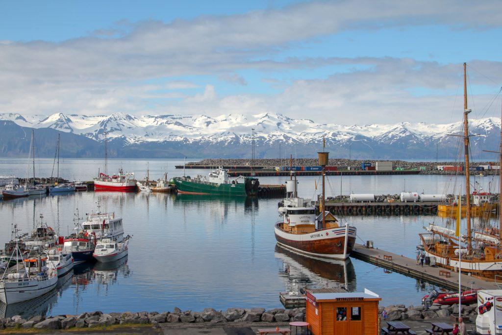 Исландия планирует ослабить ограничительные меры с 25 мая